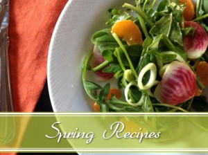 spring recipes blog slider